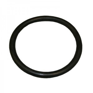 O-ring till Astral poollampa